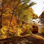 Hiawassee River Rail Adventure