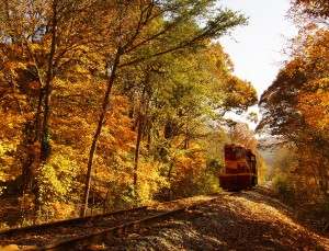Hiawassee River Rail Adventure!