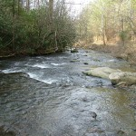 North River Tributary of Tellico River